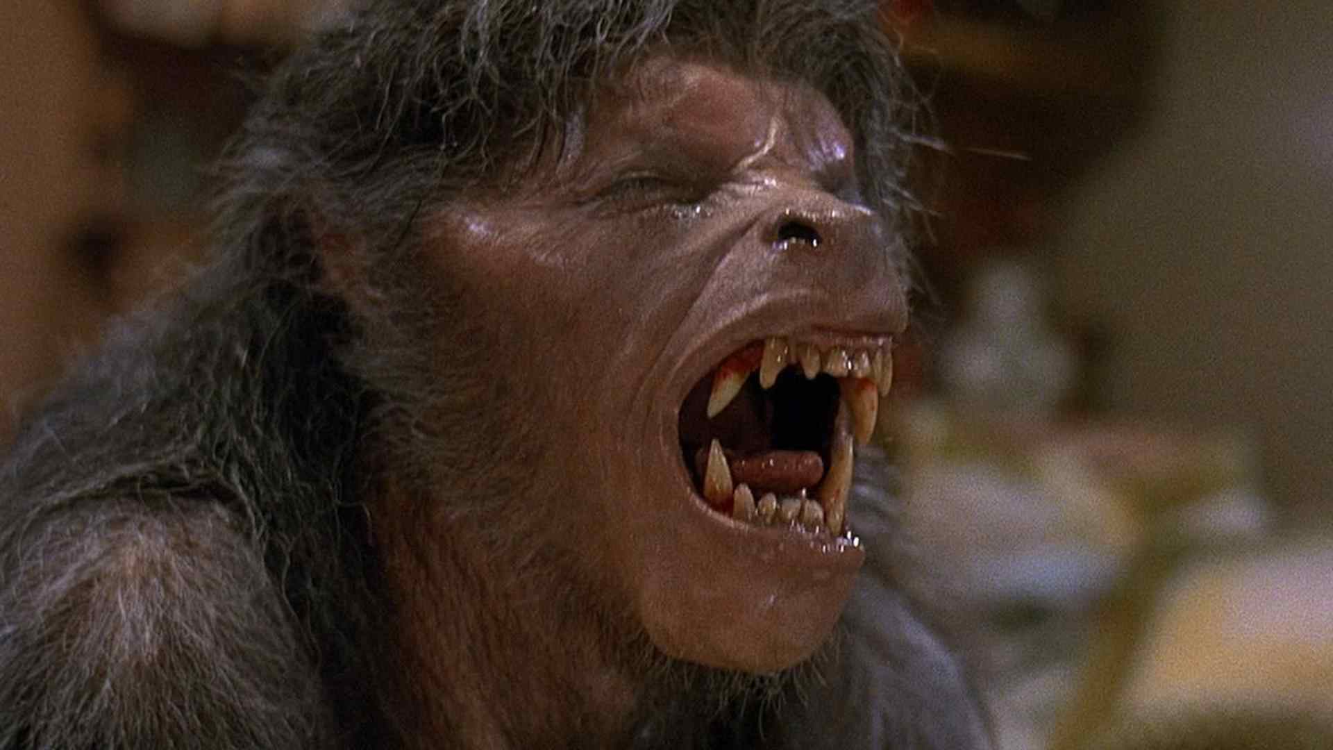 The movie poster for An American Werewolf in London directed by John Landis.