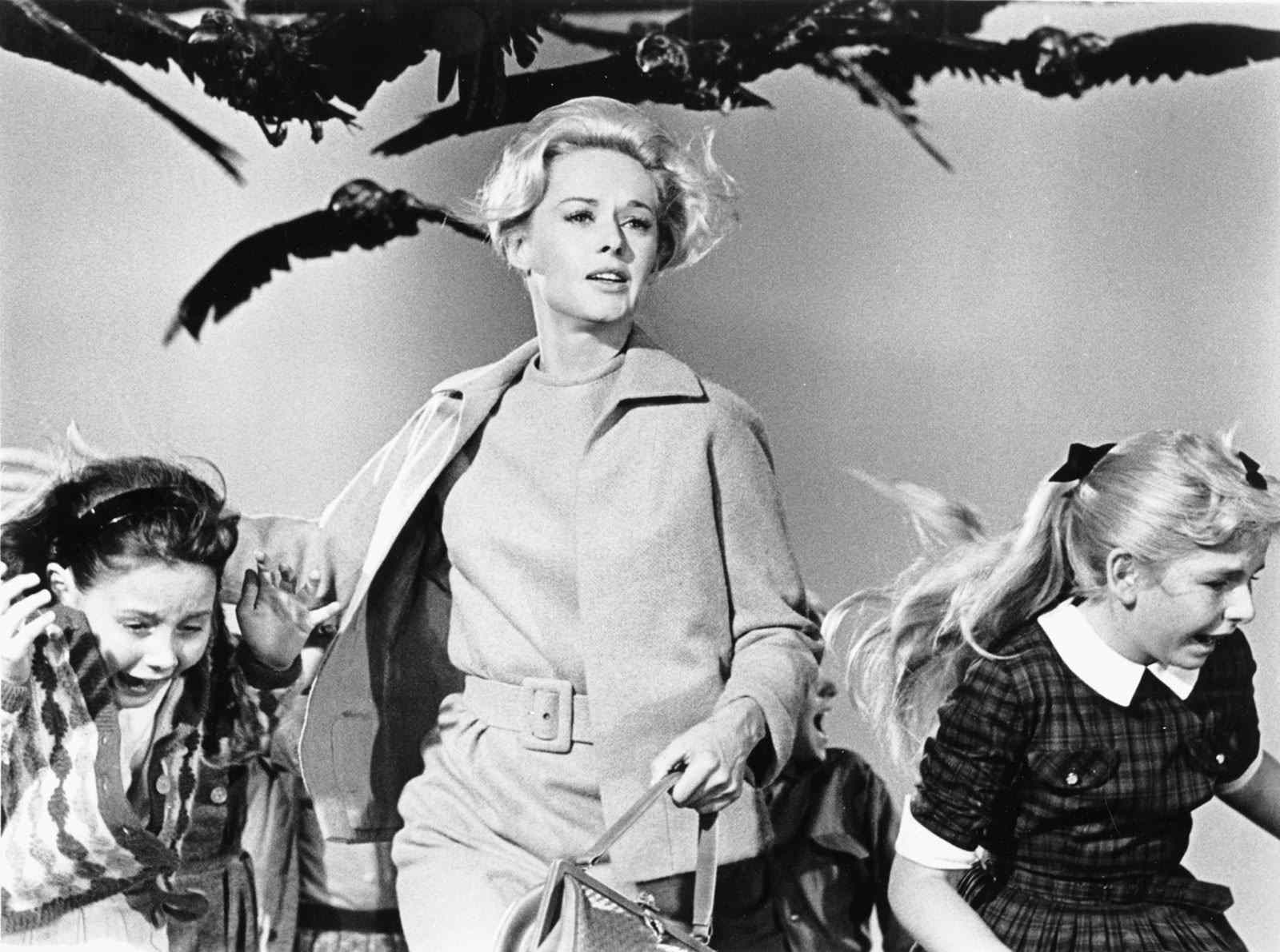 The Birds directed by Alfred Hitchcock.